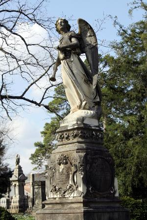 Mount Holly Cemetery: Mt Holly