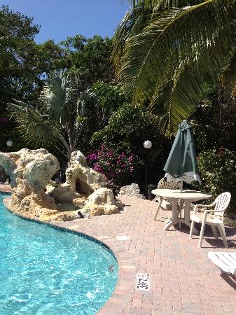Ocean View Inn and Sports Pub: By the pool