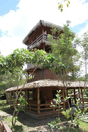 Amazon Antonio Jungle Tours