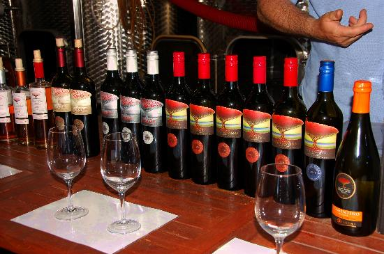 Taste The South Wine Tours: great wines