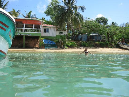 Hotel Los Delfines: morning dip