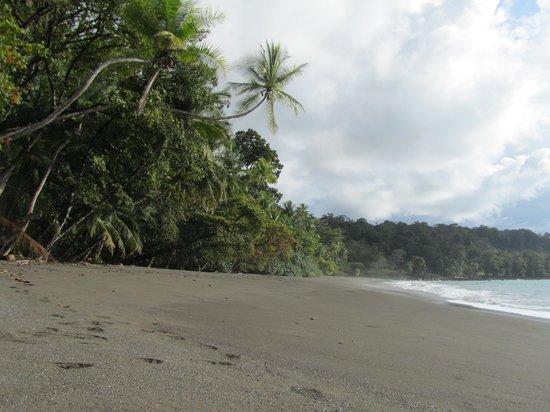 Cano Island: Beach
