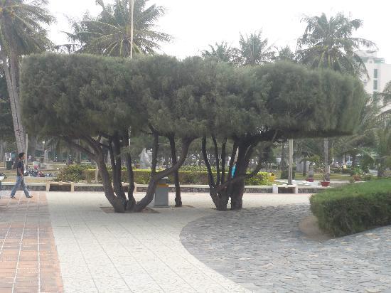 Mai Huy Hotel: ferpromenade