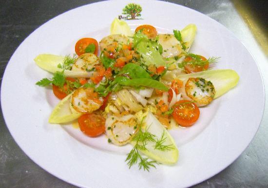 Paul Chene : Salade de Coquilles Saint Jacques