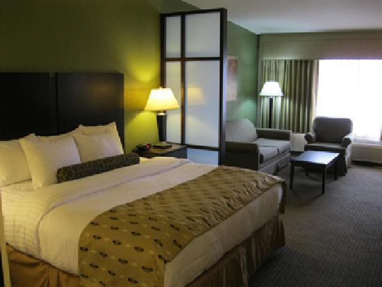 BEST WESTERN PLUS Antioch Hotel & Suites: Suites with 42' HDTVs, Microwave & Refridgerators