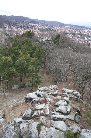 Teufelsmauer: Blick vom Großvaterfelsen in Blankenburg
