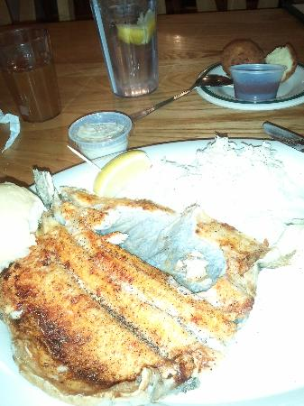 Carver's Orchard & Applehouse Restaurant: The Rainbow Trout is delicious at Carver's