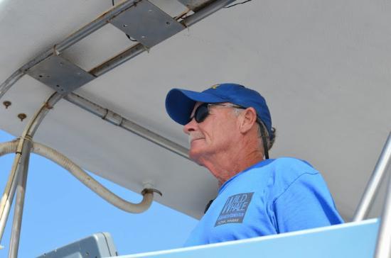Captain Dan McSweeney's Whale Watching Adventures: Captain Dan McSweeney