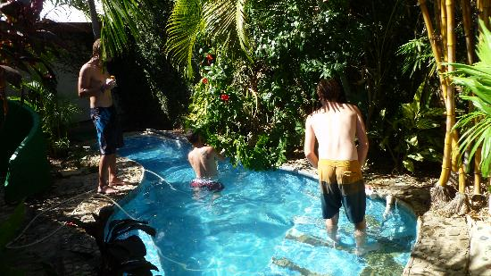 Bigfoot Hostel: The swimming pool