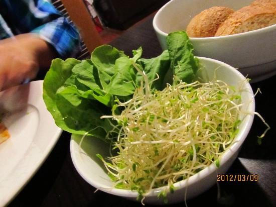 My Kitchen at the Oasis : Rockets (Arugula) and Alfalfa Sprouts