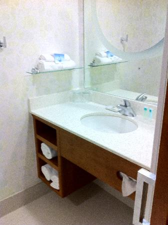 SpringHill Suites Miami Downtown/Medical Center: Bathroom