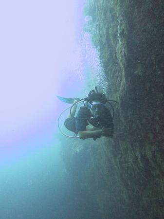 Belize Diving Services: Vertical Walls of Blue Hole with Guide on Shallow Dive