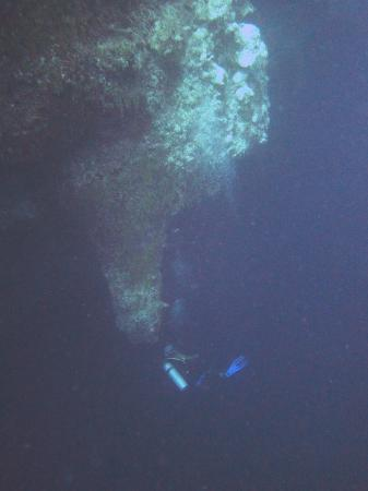 Belize Diving Services: Stalactites and Divers Below