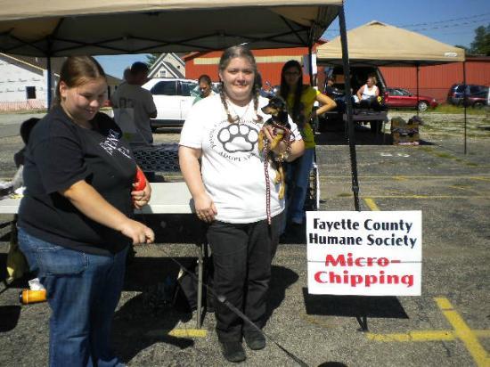 Connersville Community Flea Market: Fayette County Humaine Society