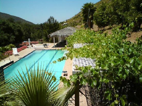 Casa Encinares Bed and Breakfast: Swimming pool