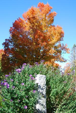 Wings Hill Inn: fall garden