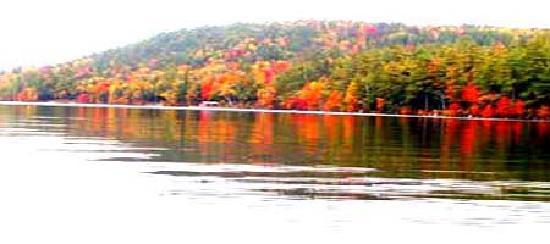 Wings Hill Inn: lake in fall