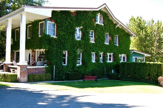 Warm Springs Inn & Winery: Grape vines cover the outside.