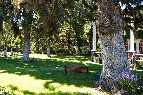 Warm Springs Inn & Winery: Front yard