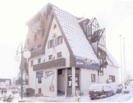 Hotel Des Neiges : L'hôtel