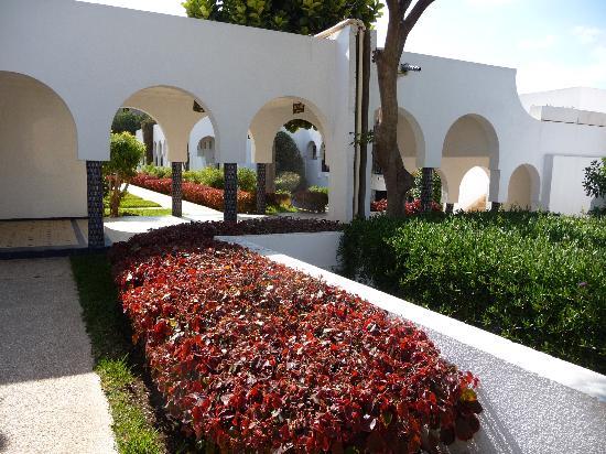 Les Omayades Hotel: vue intérieure des espaces
