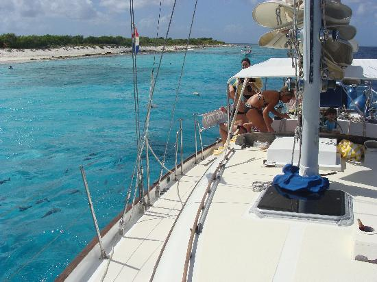 Compass Sailing: Snorkeling at Klein Bonaire