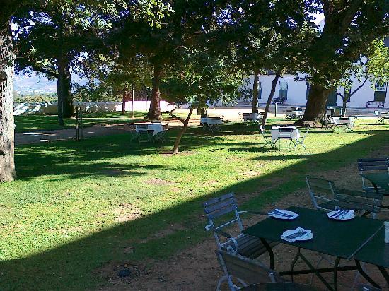 Jonkershuis Restaurant at Groot Constantia: Tische unter den Eichen