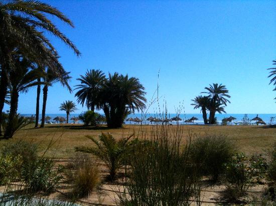 Club Med Djerba la Douce : la vue sur la plage du bar schérazade
