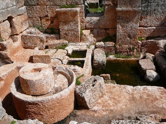 Dead City of Serjilla : Frantoio