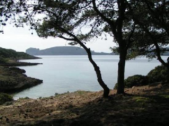 B&B Istentales: Porto Conte Trekking sulla costa