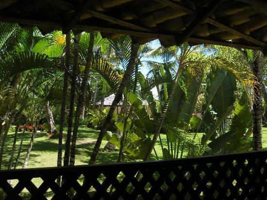 Pousada Jacaranda: View from my balcony (bungalow 1)