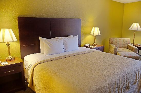 BEST WESTERN Green Valley Inn: King Guest Room