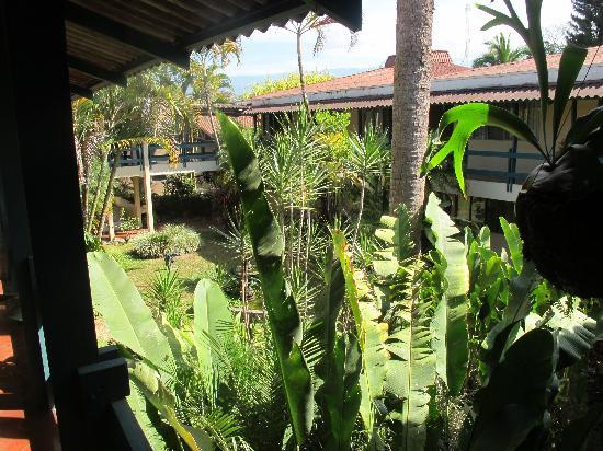 Hotel del Sur: Courtyard