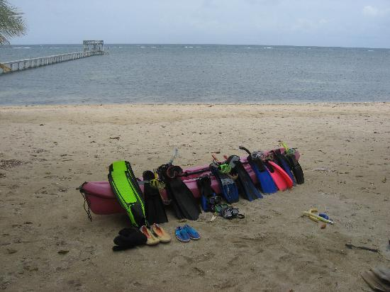 Hobbies Hideaway: Sandy Bay beach and reef