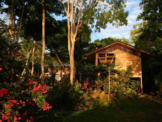 Casa Bambu Resort: Casa Linda and Casa Bambu at sunrise