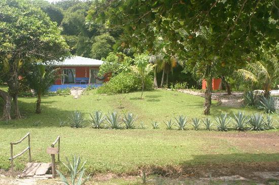 Front yard Casa Don Tomas