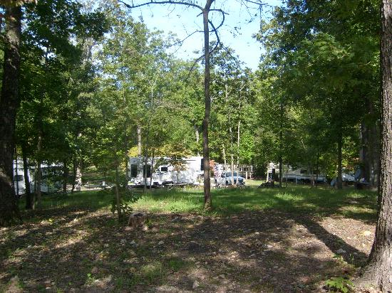 Roaring River Resort & Campground: wooded area