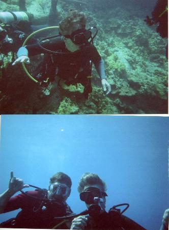 Kona Diving Company: What a wonderful adventure!