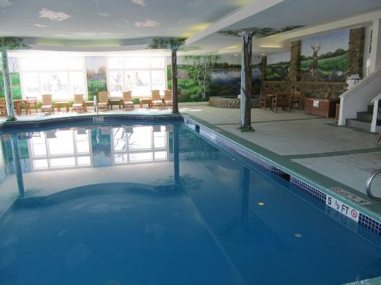 The Pool Picture Of Mountain View Grand Resort Spa Whitefield Tripadvisor
