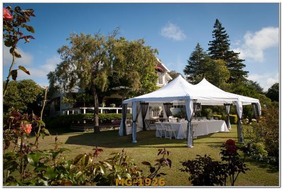 Bronte Country Estate: wedding marque in Bronte gardens