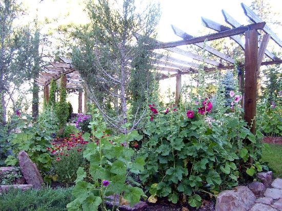 Canyon Crest Lodge: Owners love of gardening is obvious with variety of plants