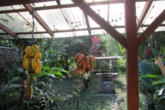 Vista Verde Guest House: dinning area