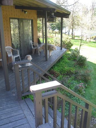 The Wayfarer Resort: Our dogs on the narrow part of the deck that overlooks the river