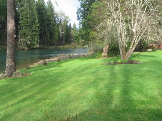 The Wayfarer Resort: The lawn looking toward the rocky beach