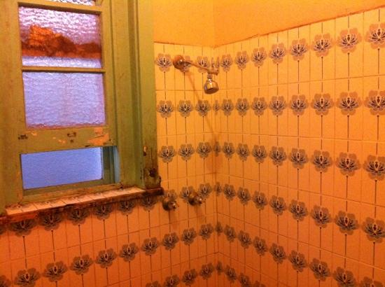 Katoomba Mountain Lodge: Male Shower Facilities