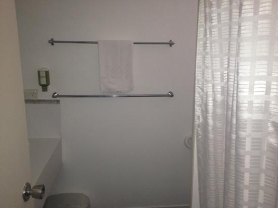 Commodore Regent: bathroom