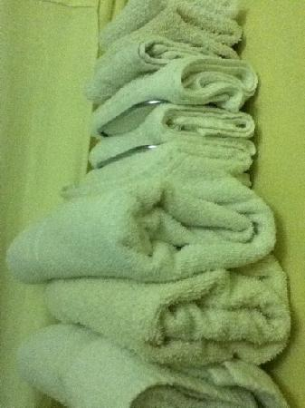Americas Best Value Inn & Suites - Killen / Florence: towels( stained)