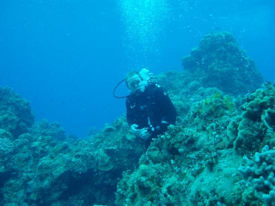 Alison and her notepad picture of cozumel scuba diving with alison cozumel tripadvisor - Best dive trips ...