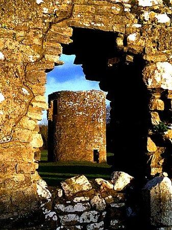 Mallow, Ireland: Ballybeg Abbey