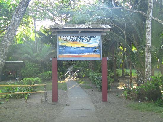 Poor Man's Paradise: Eingang